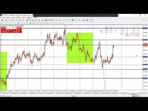market-review-wagsquad-||-donne