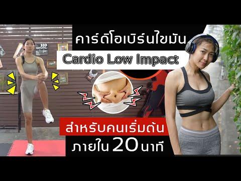 คาร์ดิโอ 20 นาที ท่าออกกำลังกายสำหรับผู้เริ่มต้น : Cardio Low Impact   Sixpackclub.net