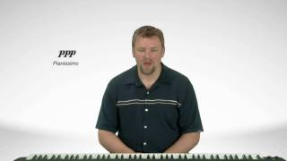 Dynamic Markings - Piano Theory Lessons