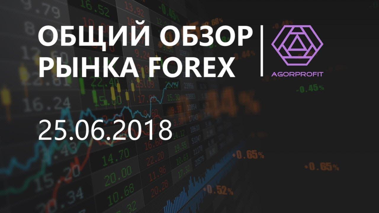 Обзор рынка forex форекс прогноз на рынке форекс на 09.11.2014