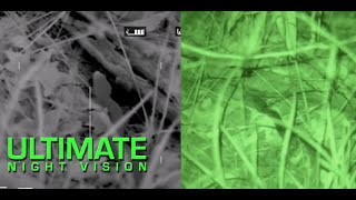 What a Snake Looks like through Night Vision and Thermal Imaging - LWTS, Gen 3 PVS-14