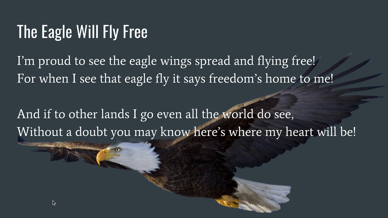 The Eagle Will Fly Free