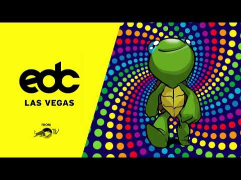 TRIPPY TURTLE @ EDC LAS VEGAS 2017 [AUDIO]