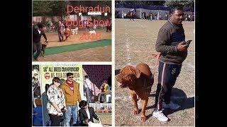 Dehradun Dog Show 2018 - Wholesale Puppy Market