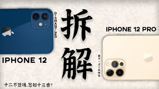 IPhone 12 Pro vs. iPhone 12 disassembly, look at the internal structure