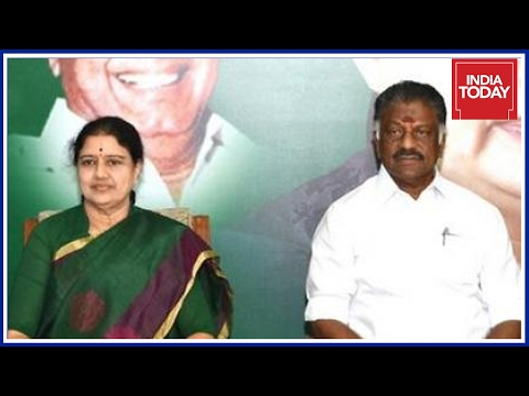 Tamil Nadu People React To Chinnamma's Elevation As TN CM