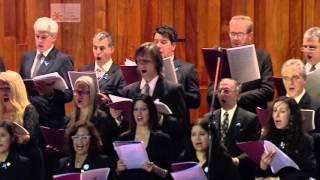 Baixar Homenaje a Mercedes Sosa: Cuando Tenga la Tierra | La Ballena Azul
