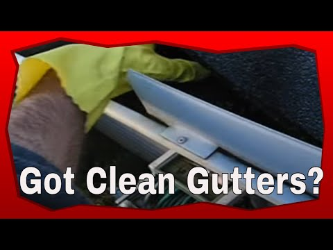 Cleaning Gutters: How to Clean Gutters