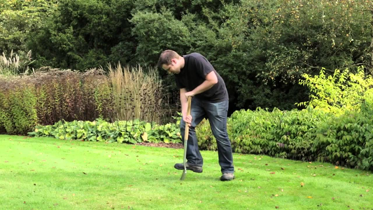 How To Get A Thicker Lawn Gro Sure Youtube