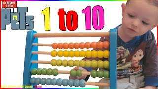How To Use Baby Abacus To Teach Colours For Children Count 1 To 10 Preschool Numbers
