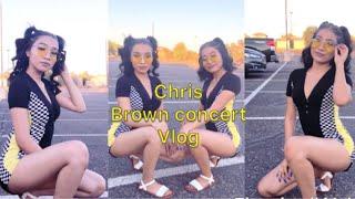 Chris Brown concert vlog