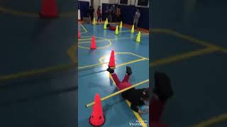 Anasınıfı 6 yaş B Grubu/ Oyun ve Hareket / Engelli Parkur
