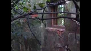 real ghost caught in video at matheran india