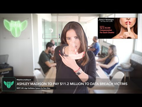 Ashley Madison To Pay Millions In Settlement   Myki Security Report