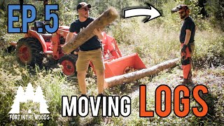 Ep. 5 Fort Bulding: Return to the Fort In The Woods | Too many logs to move