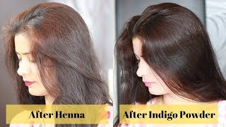 How To Apply Henna + Indigo Powder | Step By Step Process |मेरा मेहंदी और Indigo पाउडर का experience