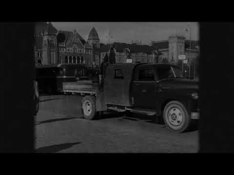 Lasten Hautausmaa: Tove (Official Music Video)