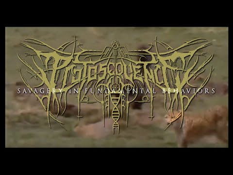 PROTOSEQUENCE - Savagery in Fundamental Behaviours (Official Lyric video) Lacerated Enemy Recs 2020