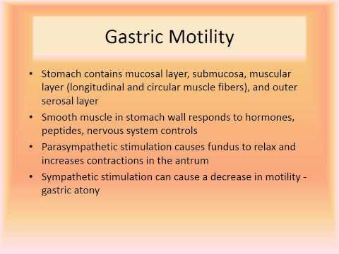 MBC Online Vet Tech Review 2.5 - Gastrointestinal System