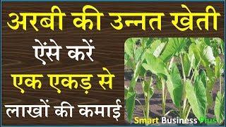 Earn Laks Rupies Only one Ekad- Arbi Cultivation || अरबी की खेती से होगी लाखों की कमाई