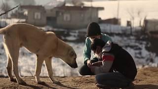 bir yudum sevgi kısa film / Short Films Dünya kanserli çocuklar haftası