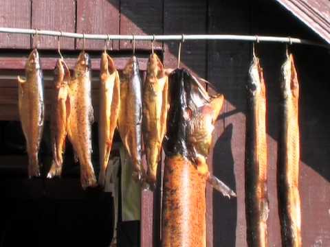 Fische räuchern - Räucherschränke, Grundlagen - von etheonTV - YouTube