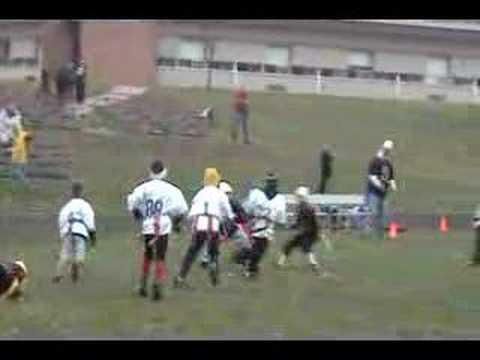 Superbowl 2007 Colts Wildcats Nic Interception