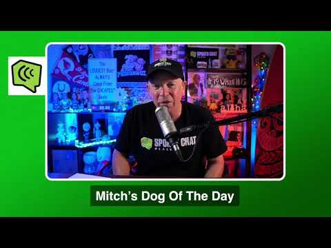 Mitch's Dog of the Day 1/15/21: Free College Basketball Pick CBB Picks, Predictions and Betting Tip