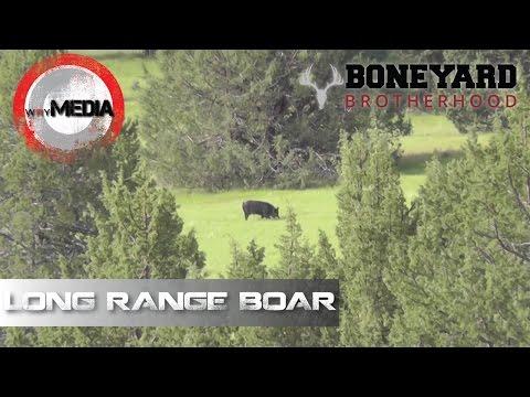 Wild Hog Hunt | Big Lone Boar | Boneyard Brotherhood