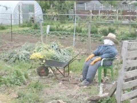 The Hidden Face of British Gardening - Sir Roderick Floud