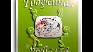 Гра ''Трофейна Рибалка'' ВК. Короткий опис гри від ''Риболовлі з Денчиком'' (Trophy fishing)