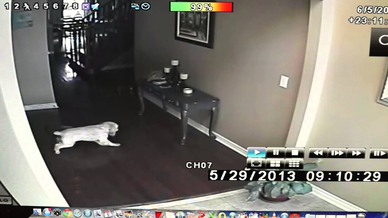 Ghosts In My House!!! [REAL GHOST FOOTAGE]   YouTube Part 75