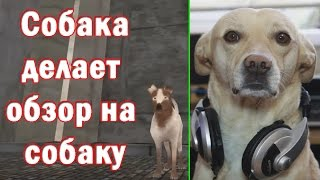 ШарДроид - Обзор игры Little Barker - Kudryavka (выпуск 1)