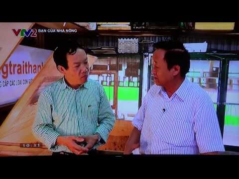 Trang trai Thanh Xuân nuôi Dế, tắc kè, VTV2 phát sóng, Bạn nhà nông, 2015 phần II