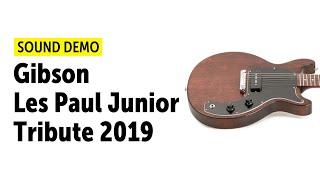 Gibson Les Paul Junior Tribute 2019 - Sound Demo (no talking)
