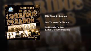 Mis Tres Animales