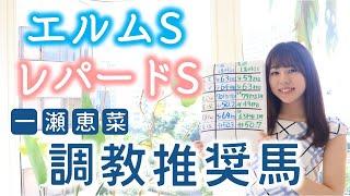 【エルムS&レパードS】一瀬恵菜の調教推奨馬!最終追い切りに注目!