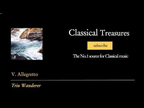 Franz Schubert - V. Allegretto