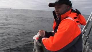 Рыбалка в Норвегии с С.Григорьевым. Часть 1, треска