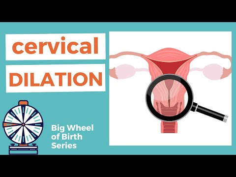 DILATION of cervix | what does cervical dilation mean