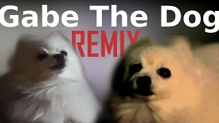 Gabe The Dog REMIX | One-T Cool-T - The magic key | Cover