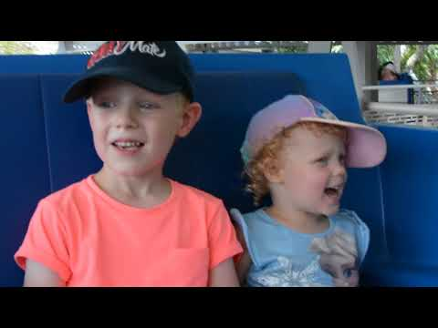 Disney World August 2016. Day 13 - Magic Kingdom and Wishes Cruise