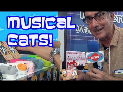 Musical Cat Toys Wacky!