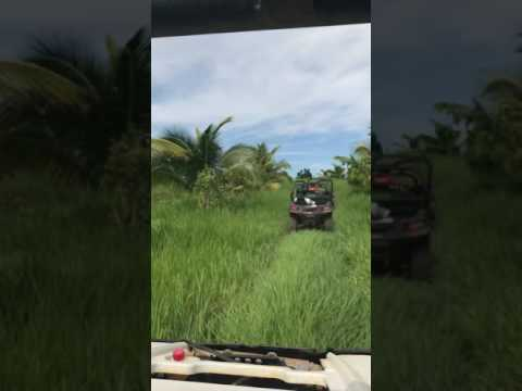 Driving ATV in Jamaican Jungle Excursion December 2016