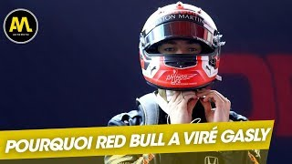 Red Bull, un univers impitoyable : Comment Gasly a perdu sa place