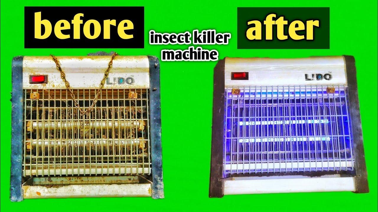 Helmintféreg fertőzés