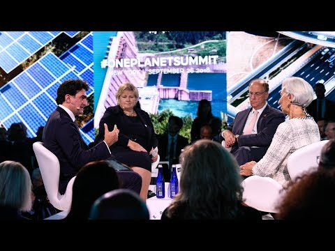 The One Planet Summit: A Platform of Commitments to Meet the Challenge of Climate Change