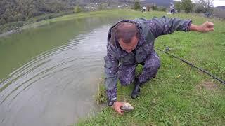 Досуг в Сочи. А на рыбалке все хуже и хуже...
