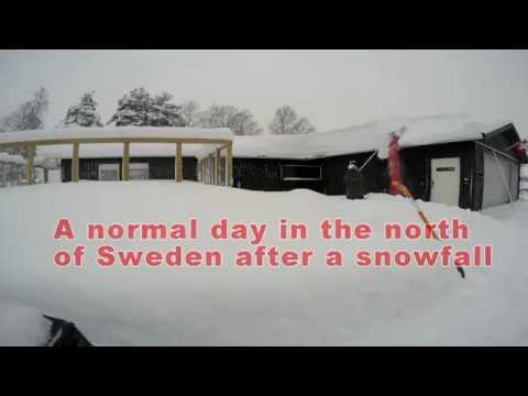 A normal day in the north of Sweden after a snowfall...