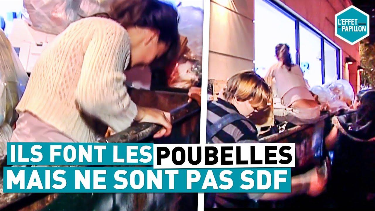 Download ILS FONT LES POUBELLES MAIS NE SONT PAS SDF (Etats-Unis) - L'Effet Papillon